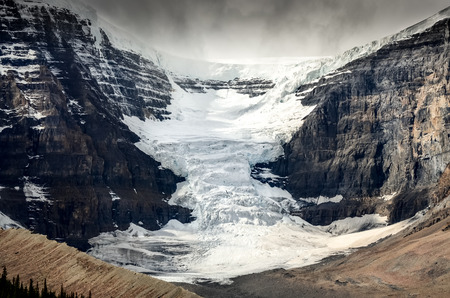 alberta: Scenic view of Columbia Icefield glacier in Jasper NP Rocky Mountains Canada