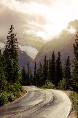 banff national park: Mountain road in backlight with dreamy filtered effect and lens flare