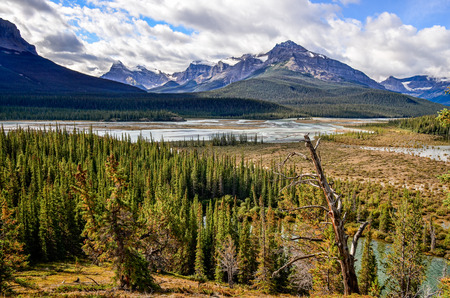 icefield: Scenic view of river and montains near Icefield parkway Rocky Mountains Canada