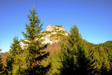 mala fatra: Rocky mountain peak with forest trees in foreground, Mala Fatra, Slovakia Stock Photo