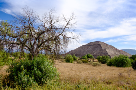 mesoamerica: Landscape view at Teotihuacan with trees and Pyramid of the Sun, near Mexico city, Mexico Stock Photo