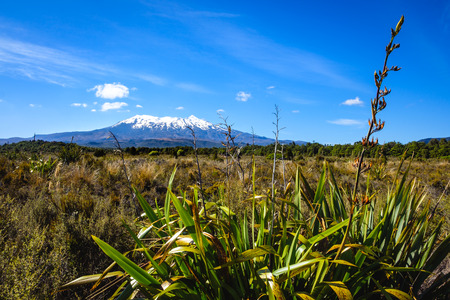 Landscape view of Mt Ruapehu in Tongariro national park, North Island, New Zealand Stock Photo