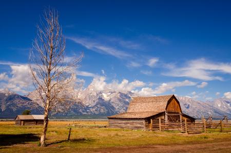 Abandoned barn on Mormon Row in Grand Teton NP, Wyoming, USA 版權商用圖片