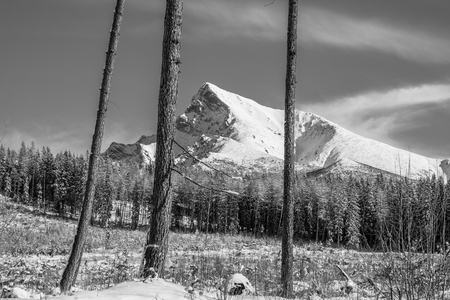 Monochrome landscape view of Mt Krivan in High Tatras mountains, Slovakia