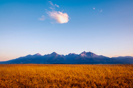 Landscape view of High Tatras mountains at sunrise with wheat field in foreground, Slovakia
