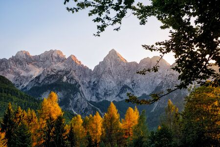 Landscape view of mountain peaks and colorful autumn foliage, Triglav national park, Slovenia, Europe 免版税图像