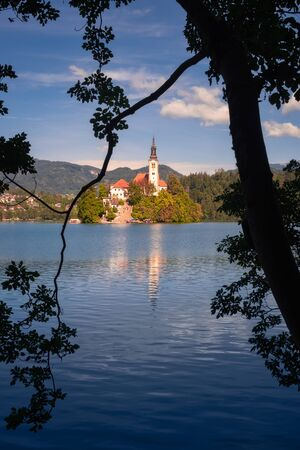 Bled island and church framed in a tree foreground, Lake Bled, Slovenia, Europe