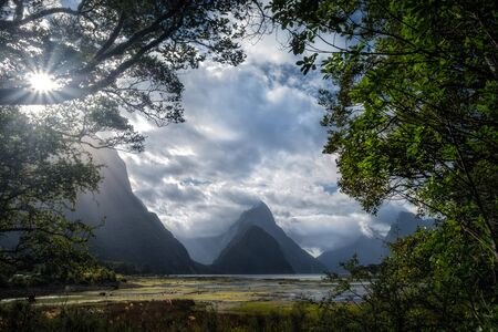 Landscape view of Milford sound framed in trees, South island of New Zealand 免版税图像 - 136550143