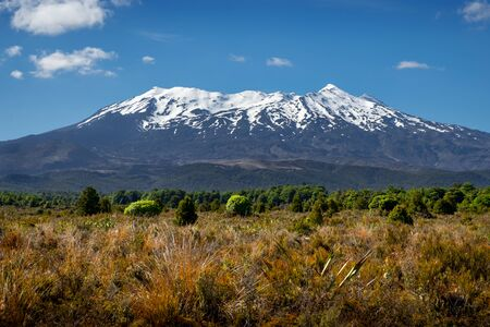 Landscape view of Mt Ruapehu in Tongariro national park, North Island, New Zealand 免版税图像