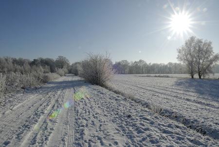 hoarfrost: A winter landscape with hoarfrost