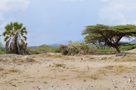 The arid landscapes of Samburu, Kenya Stock Photo