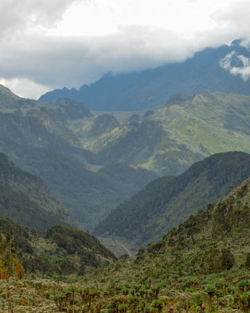 An aerial view of Bujuku Valley, Rwenzori Mountains, Uganda