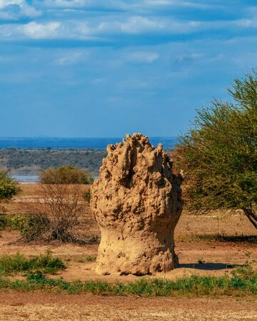 A termite mound along the shores of Lake Magadi, Kenya
