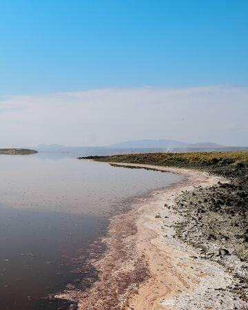 Colorful algae along the shores of Lake Magadi, Kenya