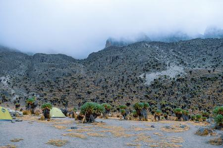 The foggy mountain landscapes at Mount Kenya Reklamní fotografie