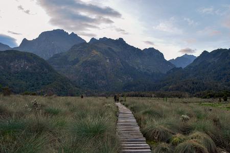 Hikers against a mountain background, Rwenzori Mountains, Uganda