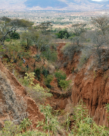Gully caused by flowing water at Kilome Plains, Kenya Stock Photo