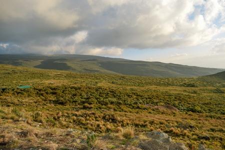 The high altitude moorland of Mount Kenya