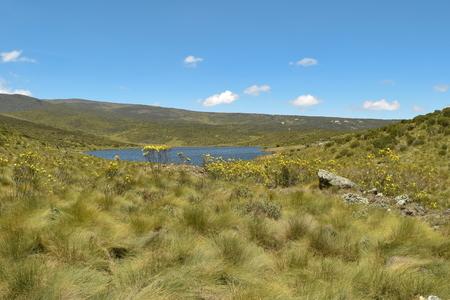 Camping at Lake Ellis, Chogoria Route, Mount Kenya Reklamní fotografie
