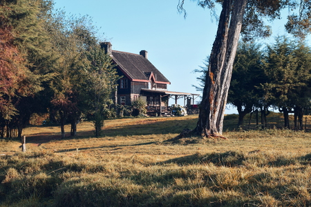 Castle Forest Lodge, Mount Kenya