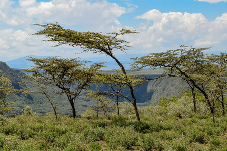 Volcanic crater on Mount Suswa, Kenya Stock Photo