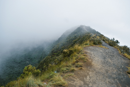 The volcanic crater on Mount Longonot against a foggy background, Rift Valley, Kenya