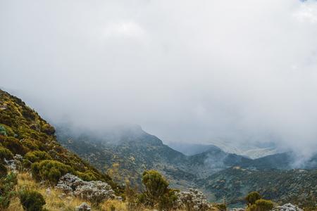 케냐, 케냐 산의 측면에 있는 애버데어 산맥의 안개가 자욱한 배경의 산 풍경