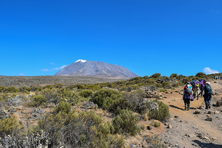 A group of hikers against the background of Mount Kilimanjaro, Tanzania