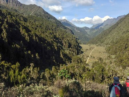 A group of hikers in the panoramic mountain landscapes of Rwenzori Mountains, Uganda 免版税图像