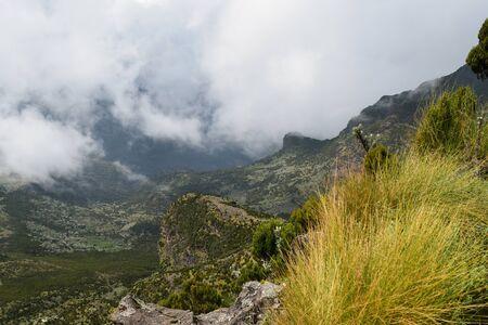 The scenic foggy volcanic landscapes in rural Kenya, Aberdare Ranges Standard-Bild