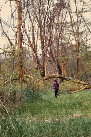 A female hiker in the wild forests of Lake Elementaita, Kenya