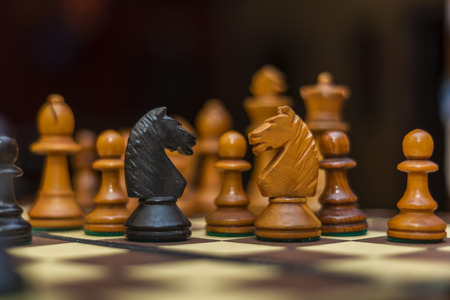 pawns: chess game with black and white horses in the foreground
