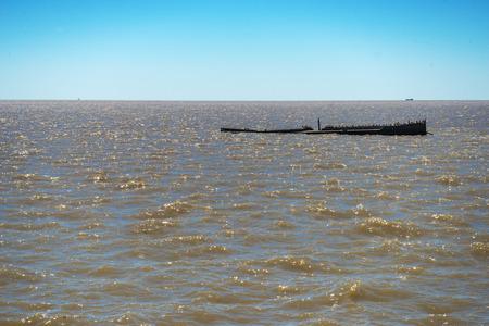 shipwreck in the Rio de la Plata, sunken ship with many birds on deck