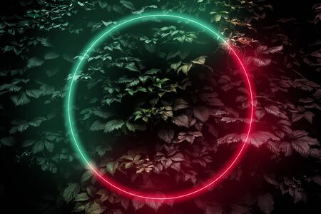 Abstract neon glow frame sign in the shape of a circle, Futuristic sci-fi background with bright red-green lights, retro style Reklamní fotografie