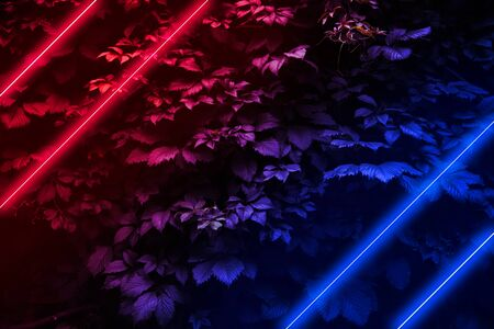 Glowing neon lights on a background of leaves, Modern futuristic night scene with red and blue glow