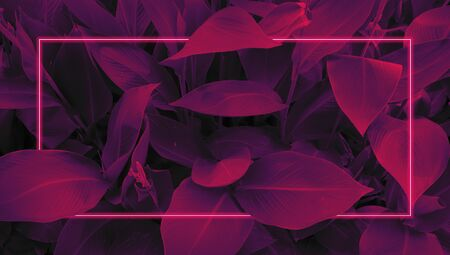Futuristic background in retro style 80s, neon glow, tropical leaves in ultraviolet color