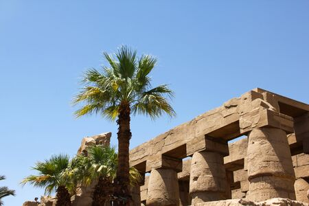 Ancient Egyptian architecture and palm trees at Karnak Temple Complex in Luxor, color photo of  landmark