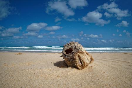 Island Boa Vista in Cape Verde, landscape - seaside Stock Photo