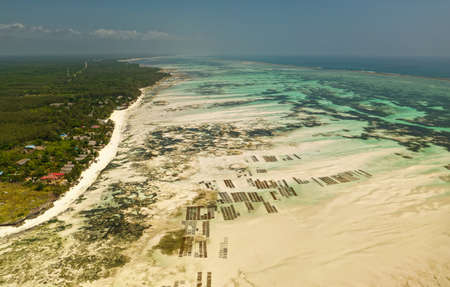 Coastline in Zanzibar, Tanzania, with the seaweed farms, landscape with the local sea farms during low and high tide, shallows on the tropical african seaside.