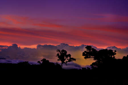 Landscape from Talamanca mountains in Costa Rica, Central America, night or sunrise or sunset view from Los Quetzales, silhouettes of the trees against the red and violet and blue sky with clouds.