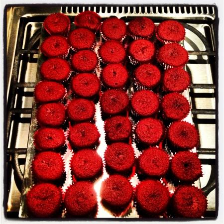 terciopelo rojo: Terciopelo rojo bizcochos caseros Foto de archivo