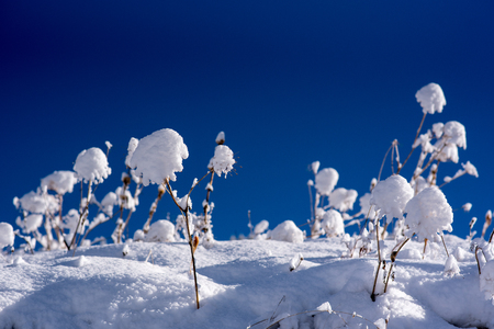 Beautiful scene of sunrise on the snowy mountain a day of beautiful sun. 写真素材