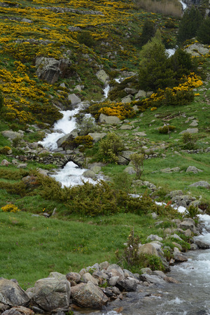 Vall d Incles in summer, canillo, andorra Foto de archivo