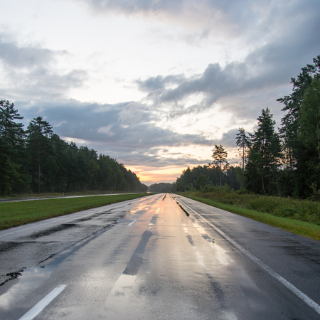 natte asfaltweg met zonweerspiegelingen en bomen