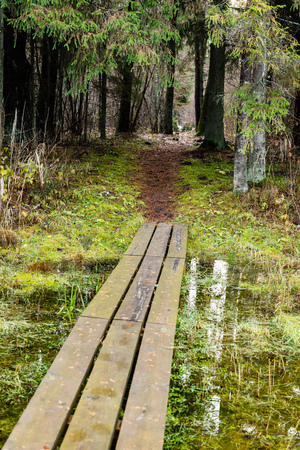 Diminishing perspective of wooden footbridge in forest. tourist trail