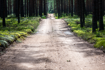 the arable land: simple country road in summer at countryside with trees around Stock Photo