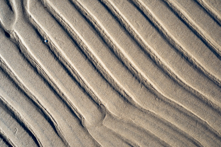 damp: A background texture of unrefined, damp and grainy natural golden sand.