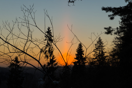 beautiful dark colorful sunrise over forest in winter frost