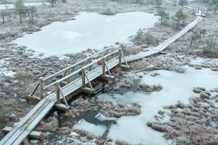 bog: wooden boardwalk in frosty winter bog landscape with frozen nature