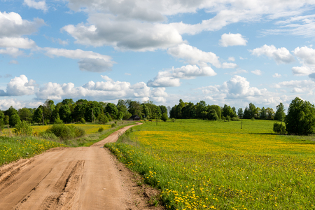 empty road in the countryside with trees and meadows in surrounding. perspective.